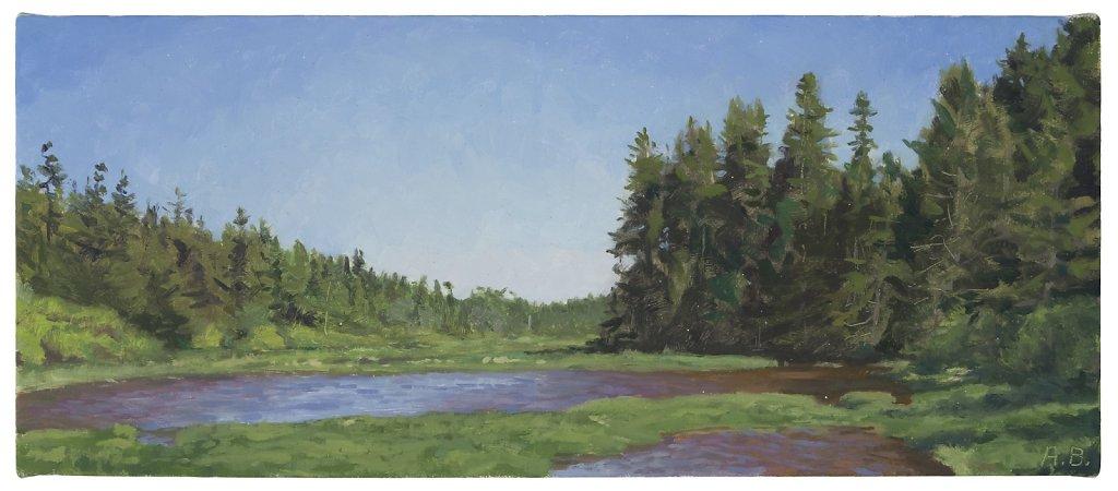 Schoodic Wetland